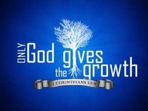 God_gives_growth_t_sm